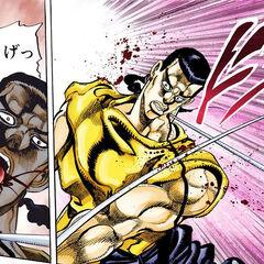 Chaka's defeat
