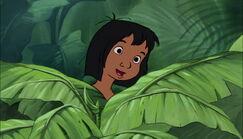 Mowgli has found out Shanti is very nice