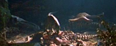 File:Rex nest.jpg