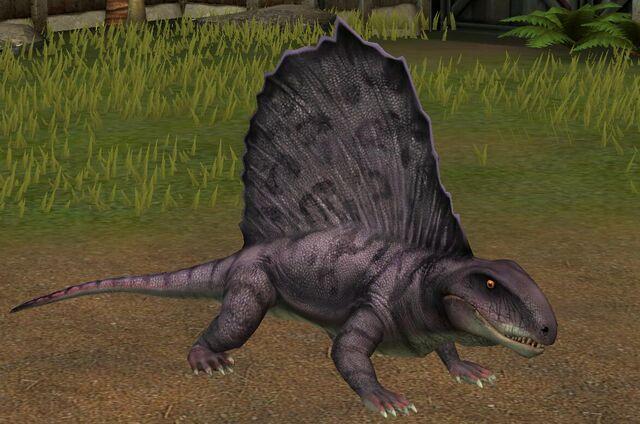 File:Dimetrodon Grandis (58).jpg
