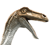File:Jurassic World-Gallimimus-head-close-up.png