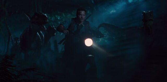 File:Owen and Raptors.jpg