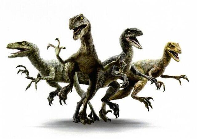 File:Raptor Squad.jpg
