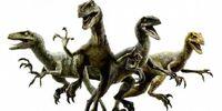 Jurassic World Velociraptor Pack