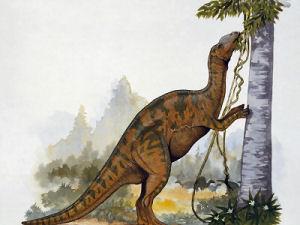 File:Nj hadrosaurus foulkii all.jpg