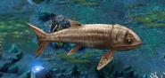 Leedsichthys level1