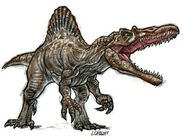 Spino (7)