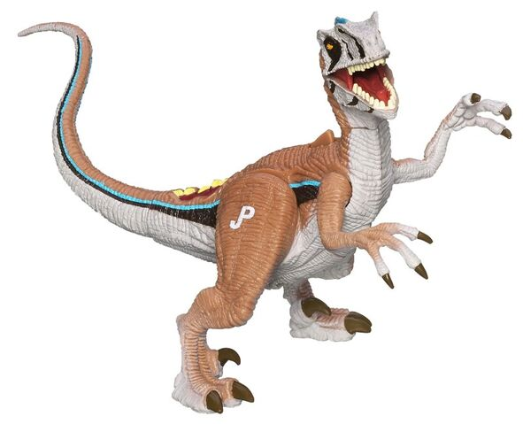File:Velociraptor osmolskae.jpg