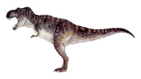 SFX Jurassic Park Tyrannosaurus Rex