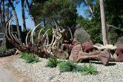 Jurassic-bones
