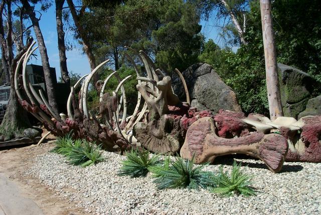 File:Jurassic-bones.jpg