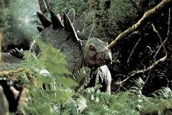 Baby-stegosaurus1-1-