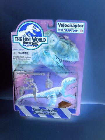 File:White Velociraptor.jpg