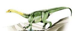 Anchisaurus2