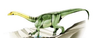 File:Anchisaurus2.jpg