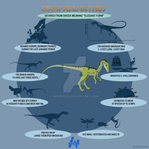 File:Compsognathus lite infographic by mcmikius-d9g80p5.png