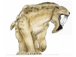 Az thyla
