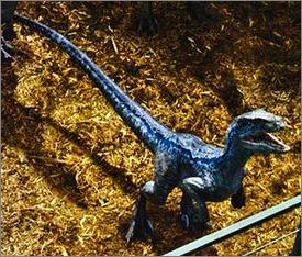 File:Raptor blue.png
