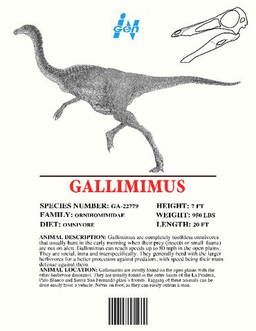 File:Ingen Dinosaur Info Sheets Gallimimus.png
