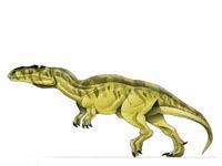 File:Metriacanthosaurus.jpg
