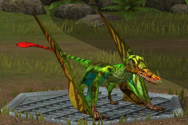 File:Rhamphorhynchus (17).jpg