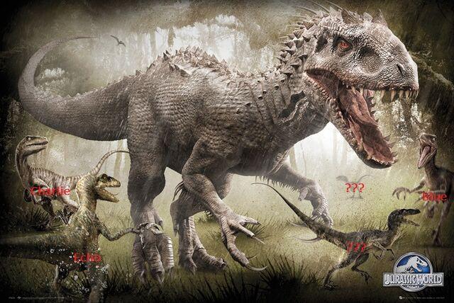 File:Mystery Raptor.jpg