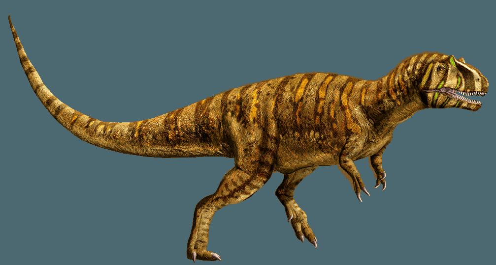Metriacanthosaurus Metriacanthosaurus | J...