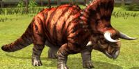 Nasutoceratops/JW: TG