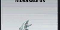 Mosasaurus/Builder