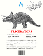 Ingen Dinosaur Info Sheets Triceratops