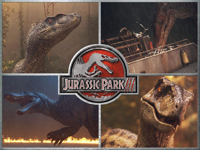 File:Jurassic Park 3 Wallpaper 2 800-1-.jpg