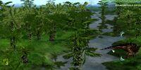 Paleo Trees