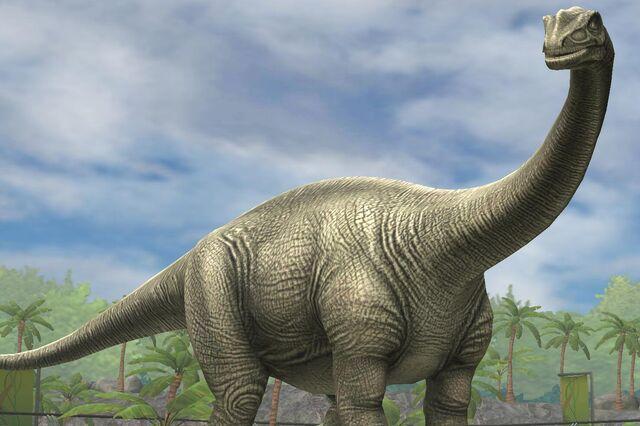 File:Shunosaurus Lii (30).jpg
