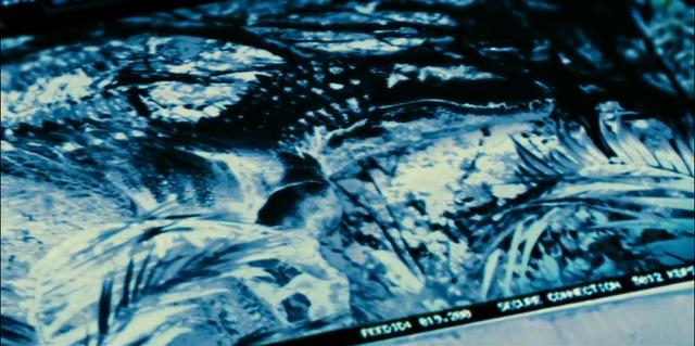 File:Indominus Rex (41).png