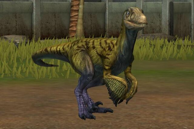 File:Pyroraptor (18).jpg