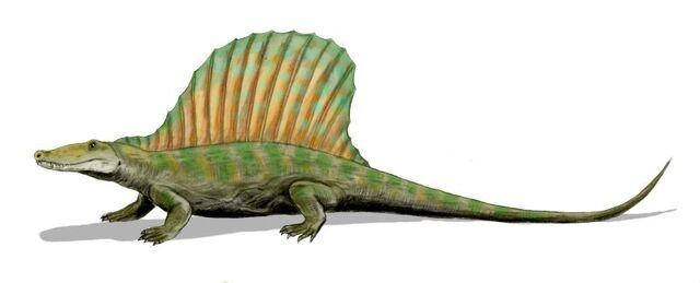 File:Secodontosaurus BW.jpg