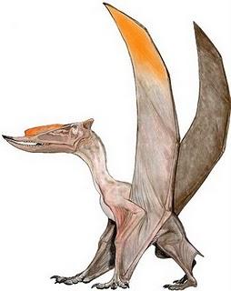 File:Dsungaripterus.jpg