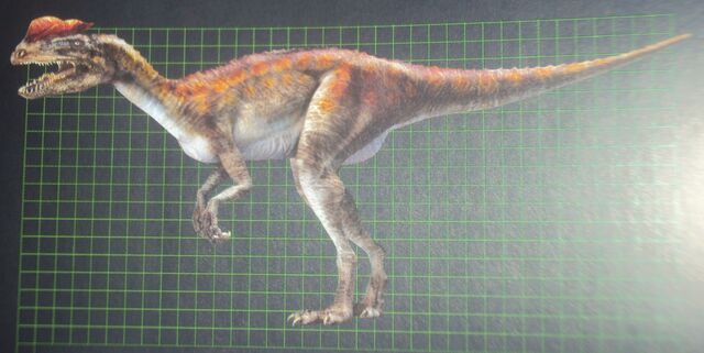 File:Dilophosaurus in the Field Guide to Dinosaurs.JPG
