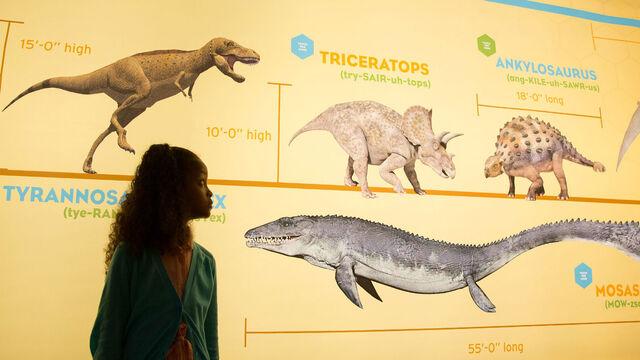 File:10 - Animals of Jurassic Park.jpg
