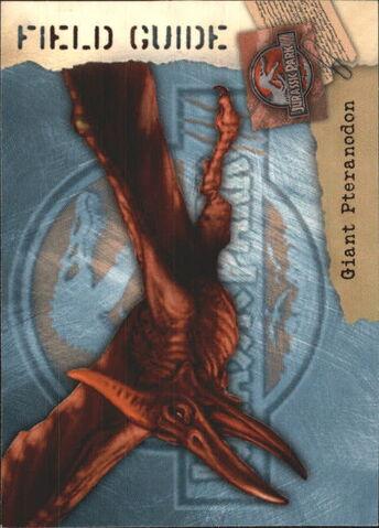 File:2001 Jurassic Park III 3-D 59 Giant Pteranodon front.jpg