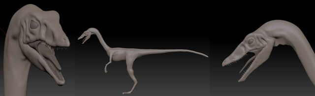 File:Compsognathus (34).jpg