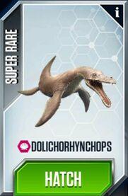 Dolichorhynchops-0-0