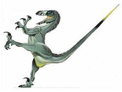 Real Deinonychus