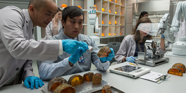 File:Creation-lab-employees-inspecting-amber.jpg