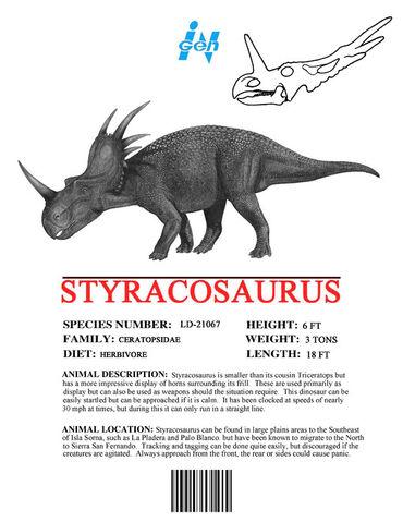 File:Sm ingen styracosaurus.jpg
