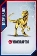 Velociraptor (3)