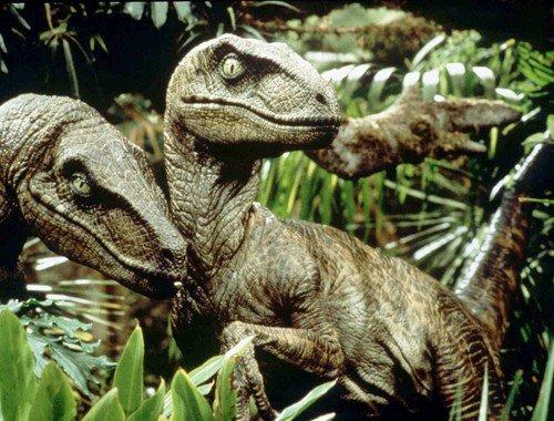 File:Velociraptor antirrhopus.jpg