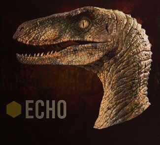 File:Raptor squad Echo header icon.jpg