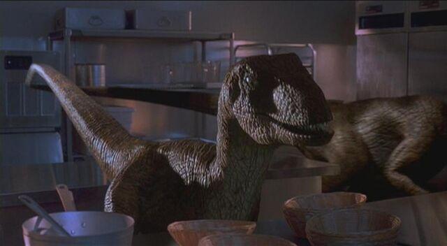 File:Velociraptor 4.JPG