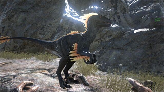 File:Deinonychus567.jpg